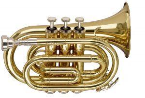 stagg WS TR 255 pocket trumpet
