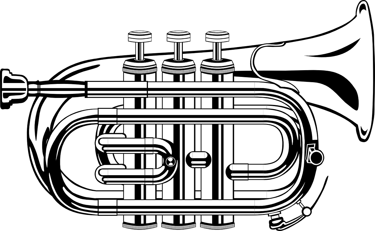 A pocket trumpet